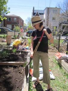 Garden Clean Up-16