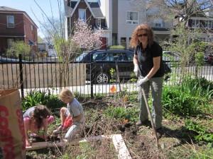 Garden Clean Up-3