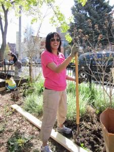 Garden Clean Up-4
