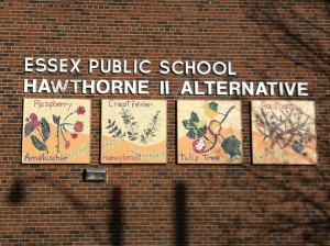 Murals are up